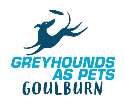 Greyhounds as Pets Goulburn